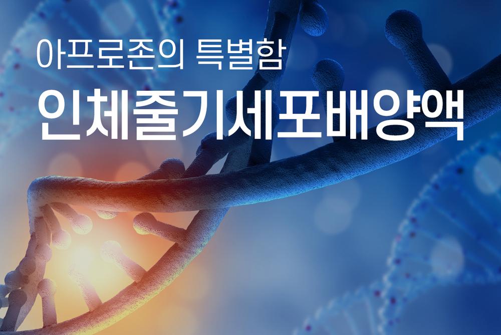 인체줄기세포배양액 이미지
