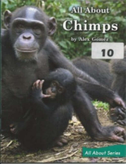 Green108 All About Chimps