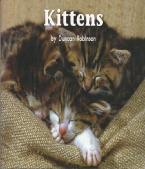 Blue26 Kittens (Level E)
