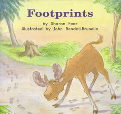 Blue72 Footprints (Level H)