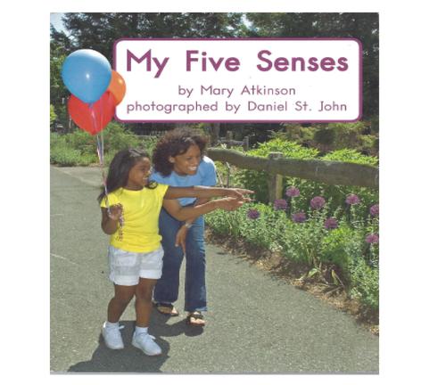 Green70 My Five Senses (Level D)