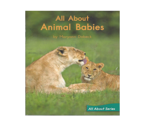 Green88 All about animal babies