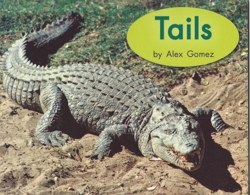 Blue32 Tails(Level D)