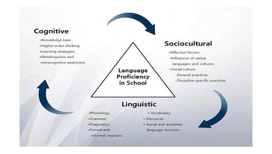 거침없이 읽고 쓰고 말하는 영어능력 습득(Language Acquisition)