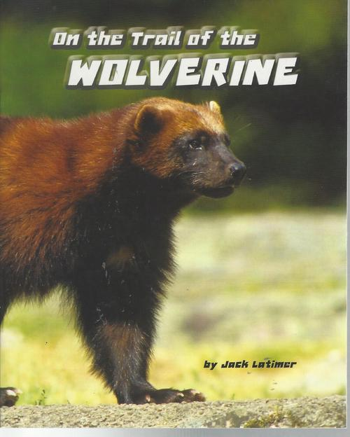 Red 97 On the trail of the wolverine (level O)