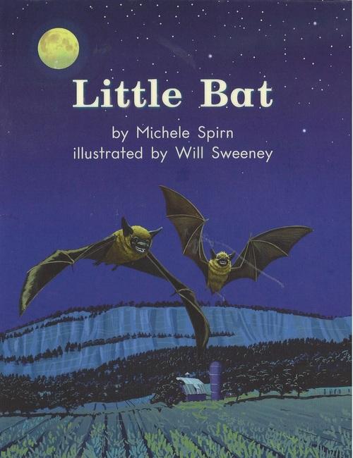 Blue27 Little Bat (Level E)
